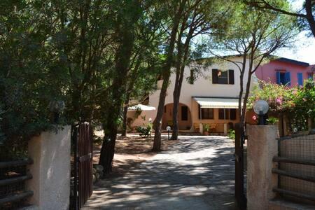 Villa esclusiva in pineta a pochi passi dal mare - Pula