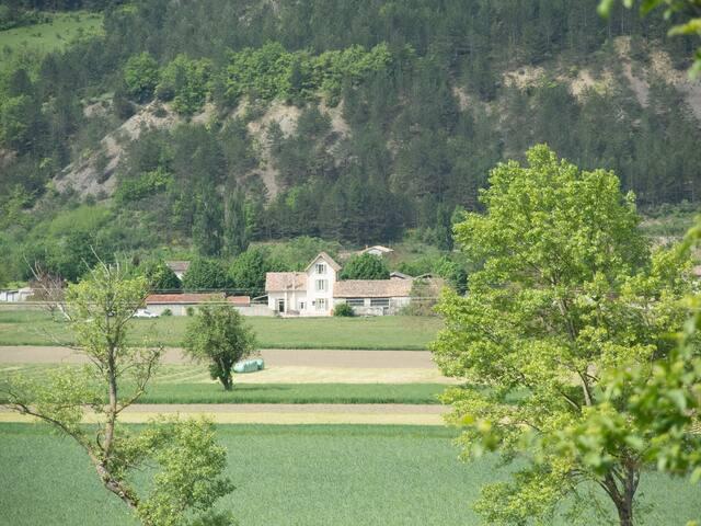 Villa de charme et ses 11 tilleuls centenaires !