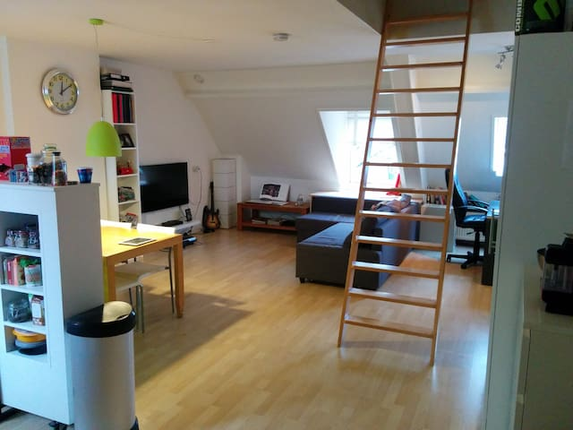 Apartment at the most perfect location of Arnhem - Arnhem - Wohnung