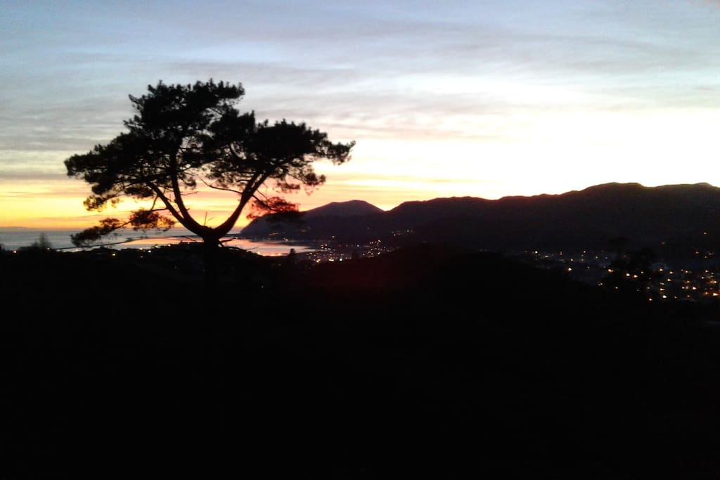 Watch the sunrise over Nelson