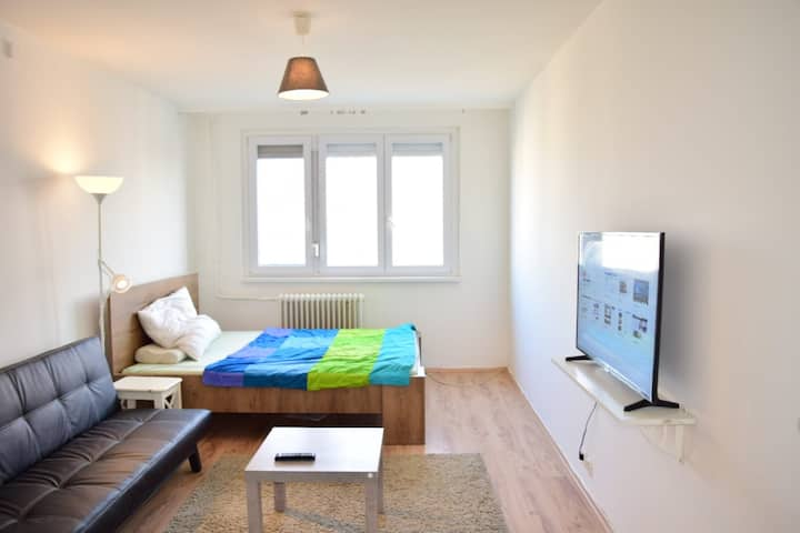 one unique room in renew flat 17min to cinter
