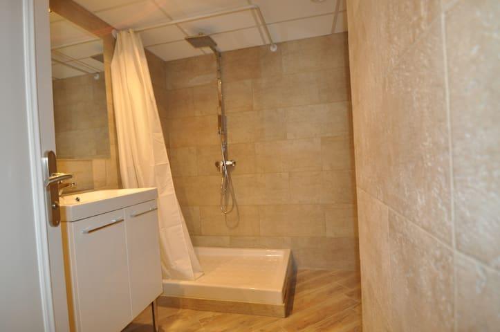 salle de bain. lavabo, douche, wc