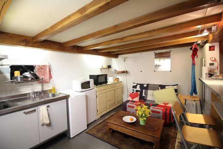 Studio centre ville 30m2 + mezzanine 20m2 - Aix-en-Provence - Apartment