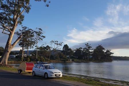 Tassie Teardrop Trailer - explore Tasmania - Fern Tree