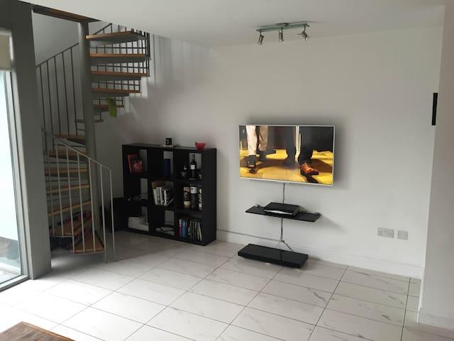 Bright & Modern Ground Floor Duplex - Dublin - Lägenhet