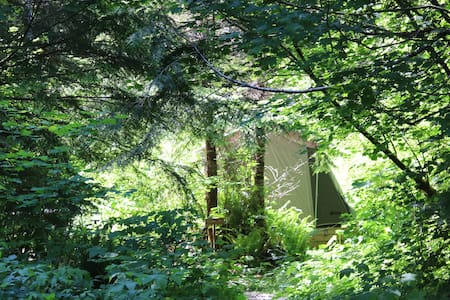 Sol Duc Rain forest cabin tent  8
