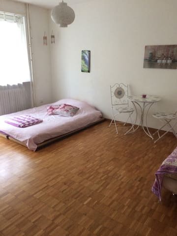 2 room flat in Bern - Bern
