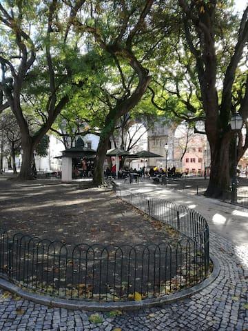 Charming apartment in Jardim das Amoreiras