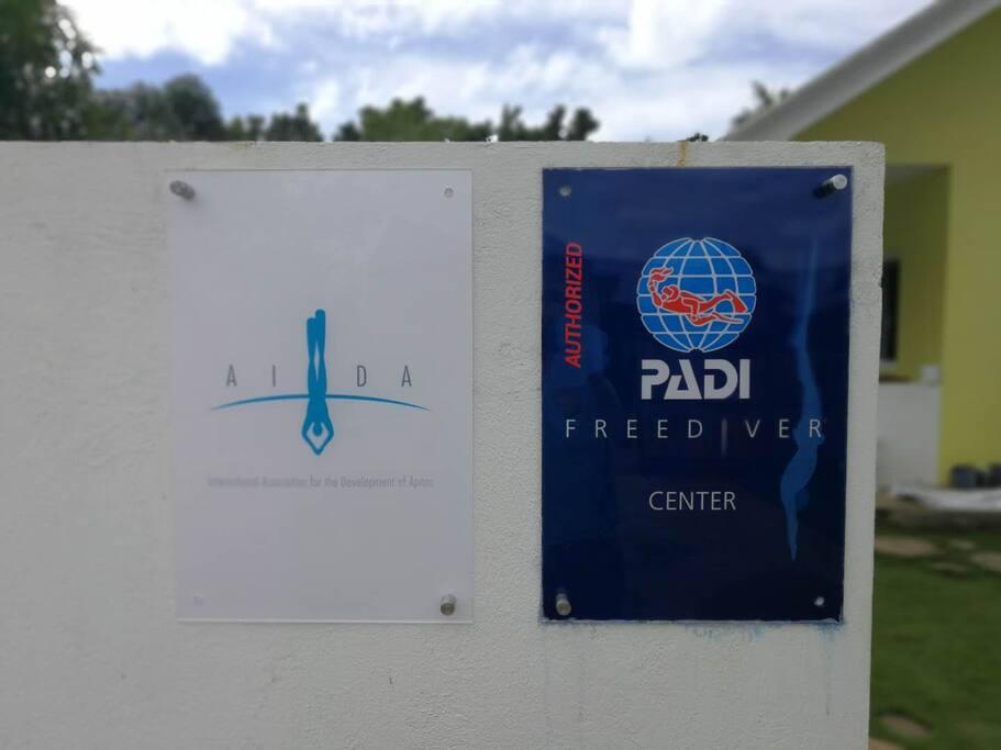 全岛唯一可以教授双系统的自由潜水潜店