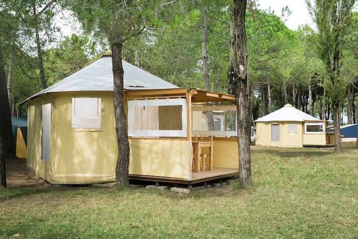 Tenda Eco Lodge tra la pineta e il mare