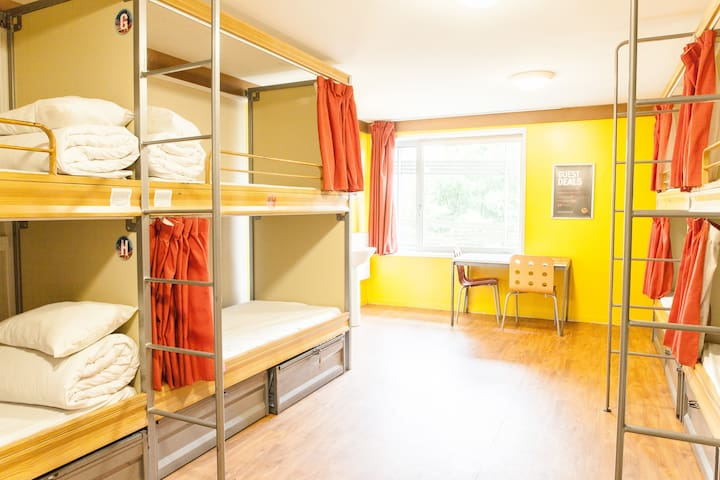 Bed in 8 Bed Female Dorm