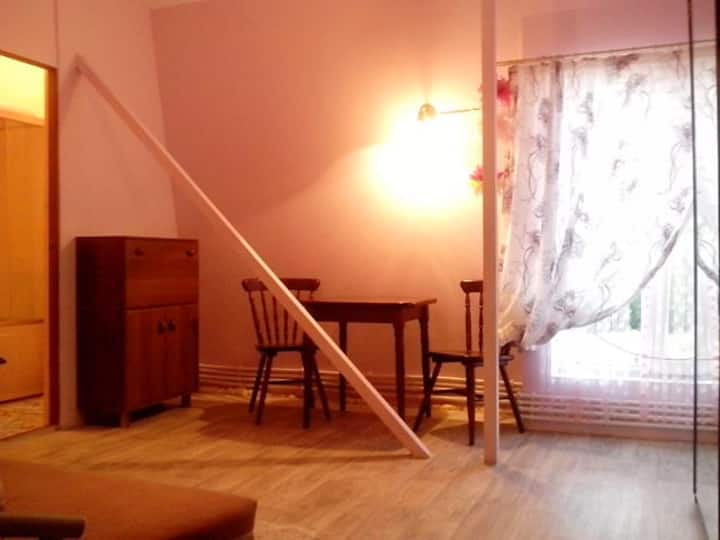 Комнаты с сан узлами и общей кухней в частном доме