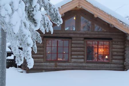 Mountain lodge, härligt timmerhus i Fjätervålen