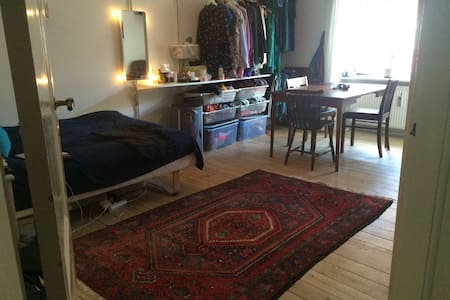 Cozy private room with great location - København - Apartment