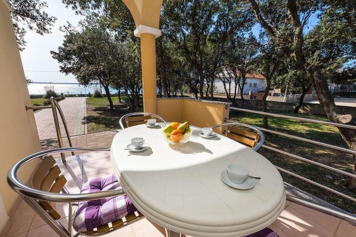 One bedroom apartment near beach Vrsi - Mulo, Zadar (A-5951-a)