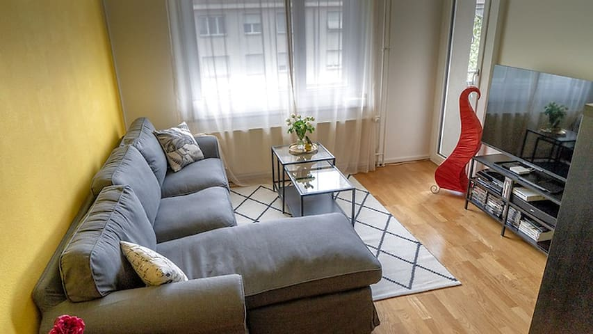 Spacious 2 1/2 room apartment near city centre