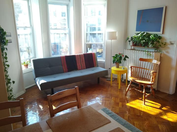 Gorgeous two bd apartment close to Prospect Park!