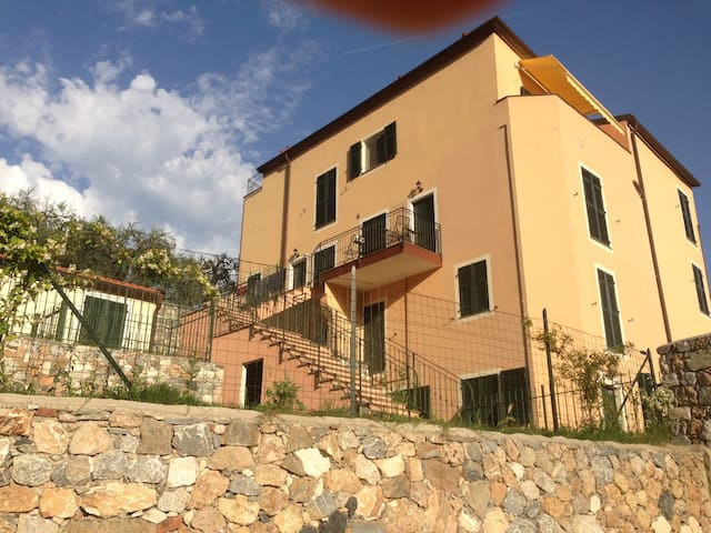 Apartment with swimming pool between olive trees