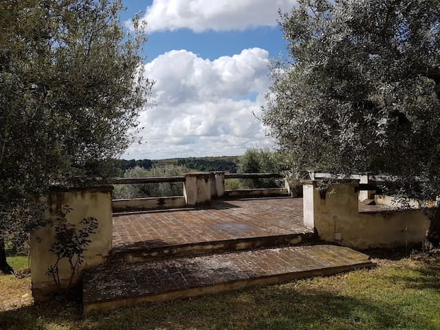 Wonderful views on the sea, hills and olive trees - Pedaso - Apartment
