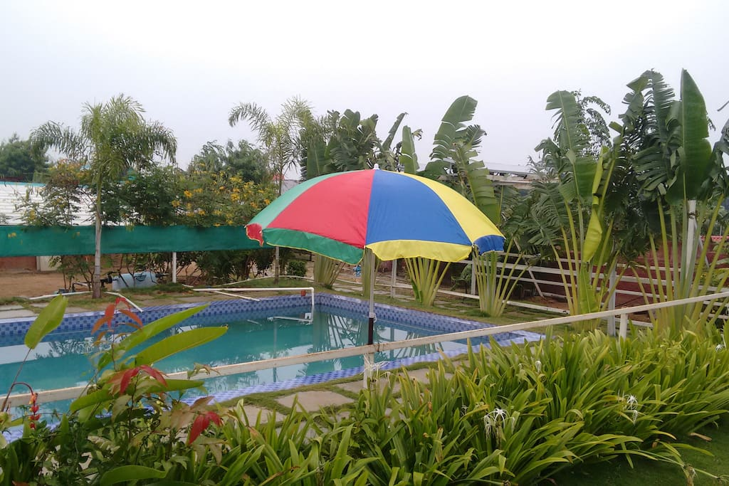 Aerial pool view with beach umbrella