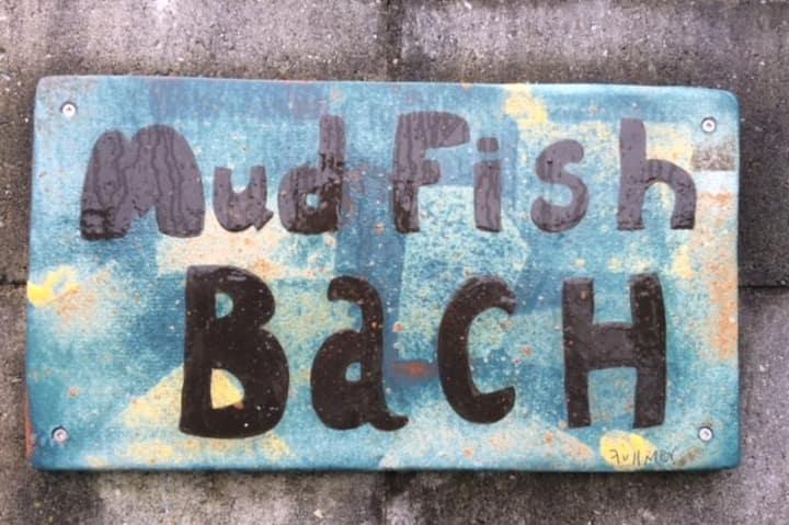 Mudfish Bach