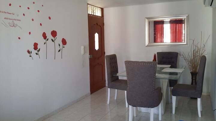 Apartamento Amoblado 2 hab. Furnished Delux Apt
