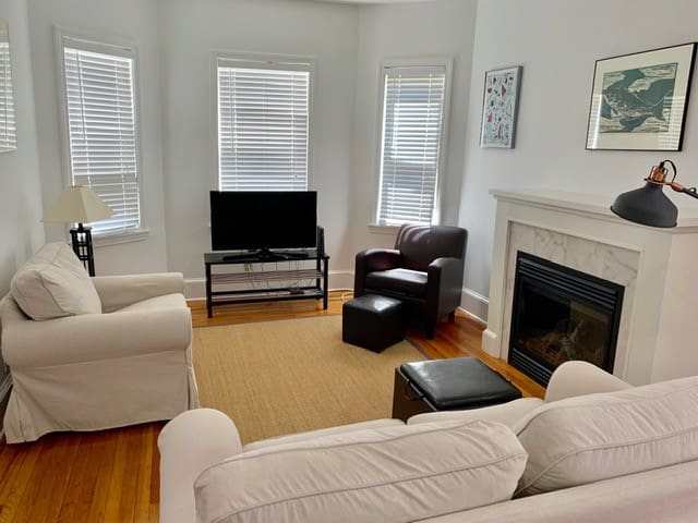 SuperSized, Sunny, 1 BR: walk to Davis Sq & Train