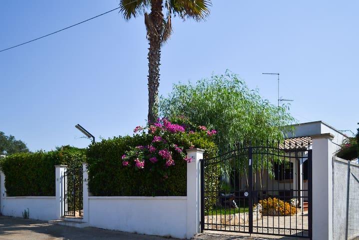 Villa vacanze ideale per famiglie giardino m235