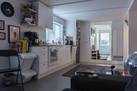 Cosy studio apartment in heart of Reykjavik - Reykjavík - Appartement