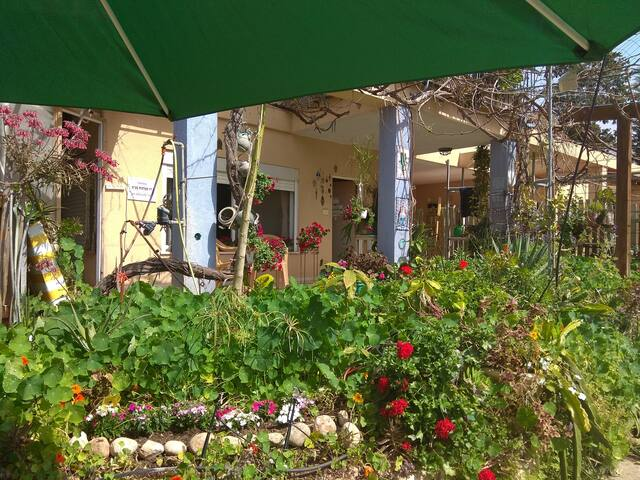 Kibbutz Ha'Ogen
