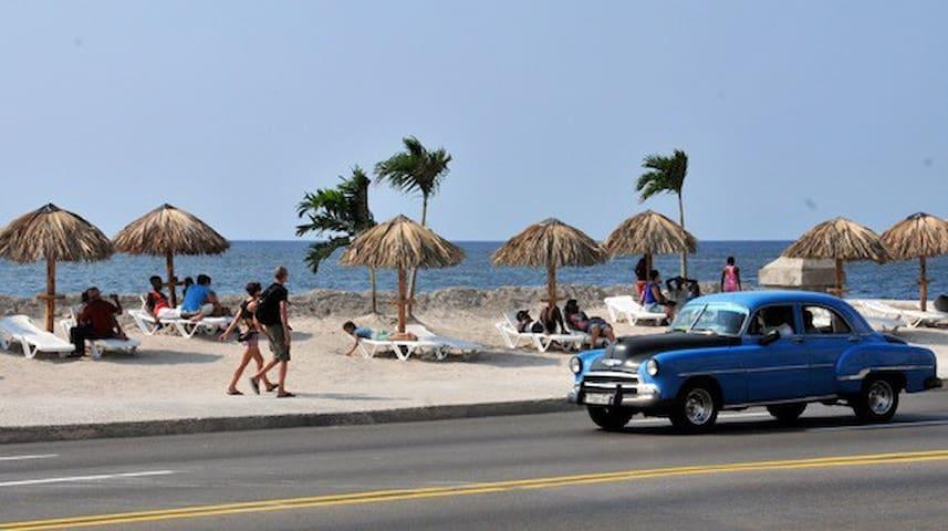 """""""Malecon de La Habana"""""""