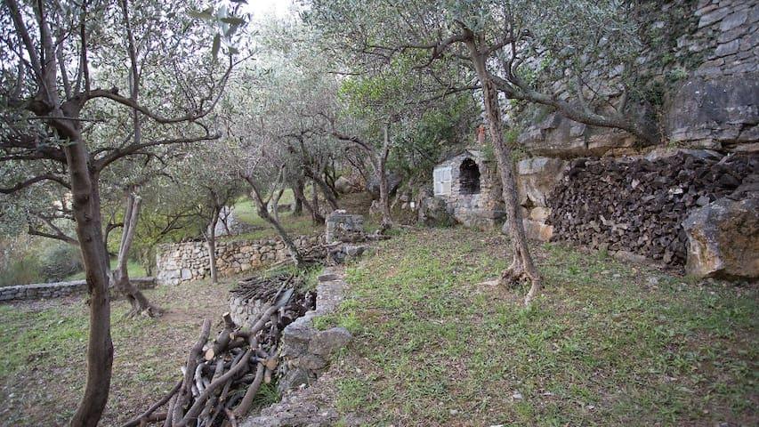 Portovenere - Casetta indipendente - 11022-LT-0719