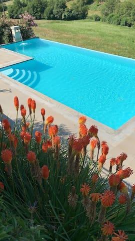 Favoloso B&B, con piscina, immerso nel verde.