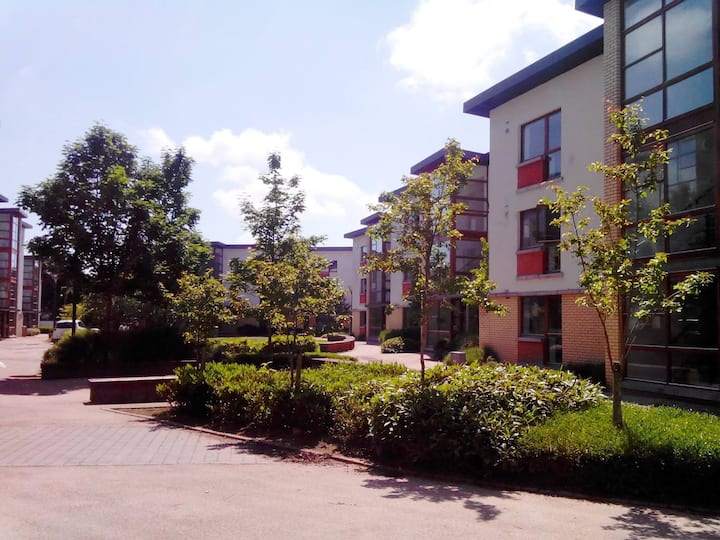 Apartment 74 Room 2 Shanowen Square