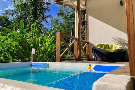 Casa Matapalo/ Jacuzzi in the heart of the jungle
