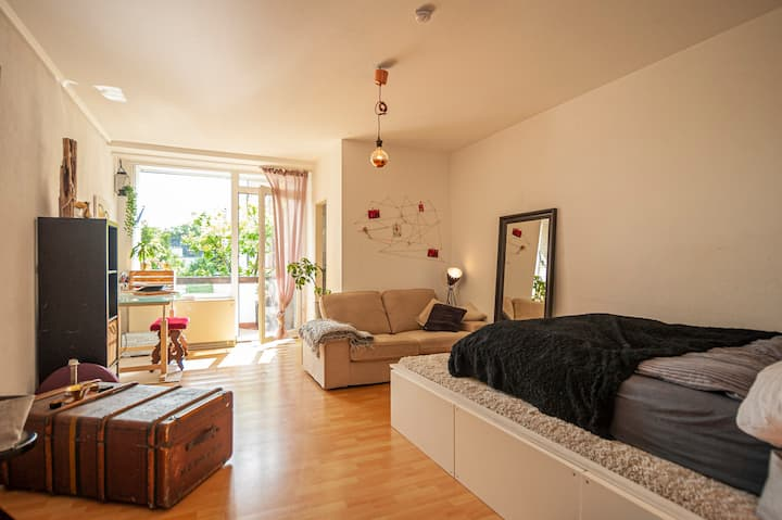"central, cozy apartment close to ""Elbe"""
