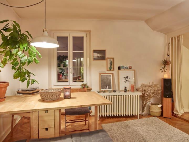 Montreux: appartement cosy en vieille ville