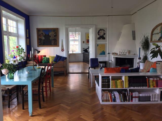 Huge beautiful artist flat, central