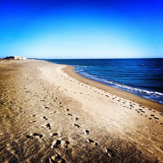 les vastes plages
