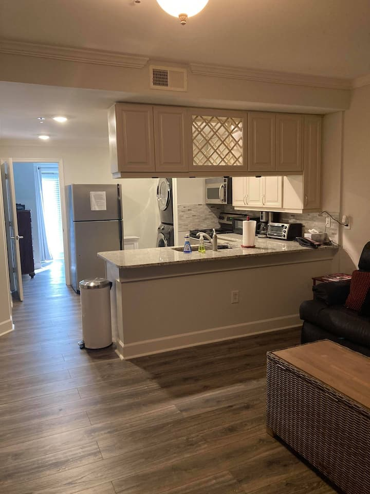 1 bedroom TWO BATH Huge Downtown Condo! (#203)
