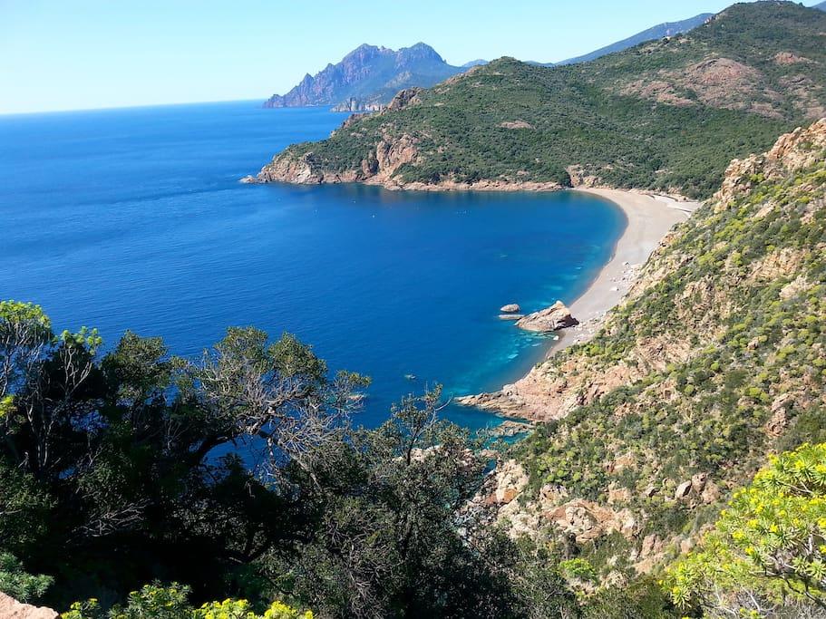 Affitto Appartamenti Corsica