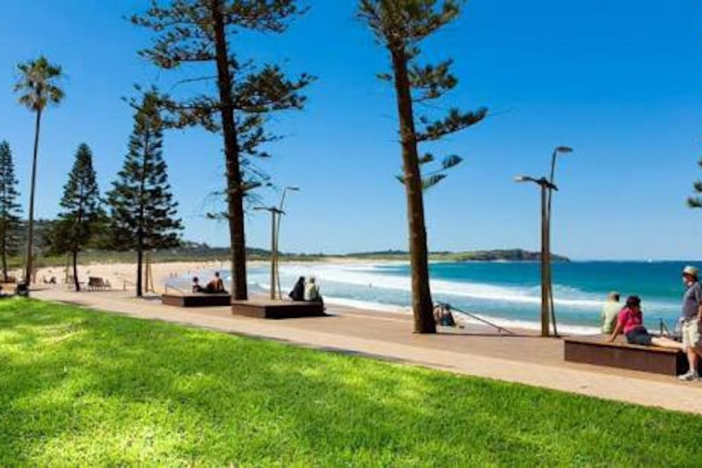 Beautiful dee why beach with recently finished decks, lawns, showers, toilets, solar lights. Restaurants, bars, convenient shops, parks and kids playground.