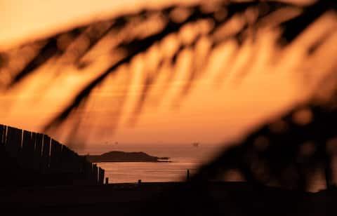 Mahalo lobitos дом для серфинга