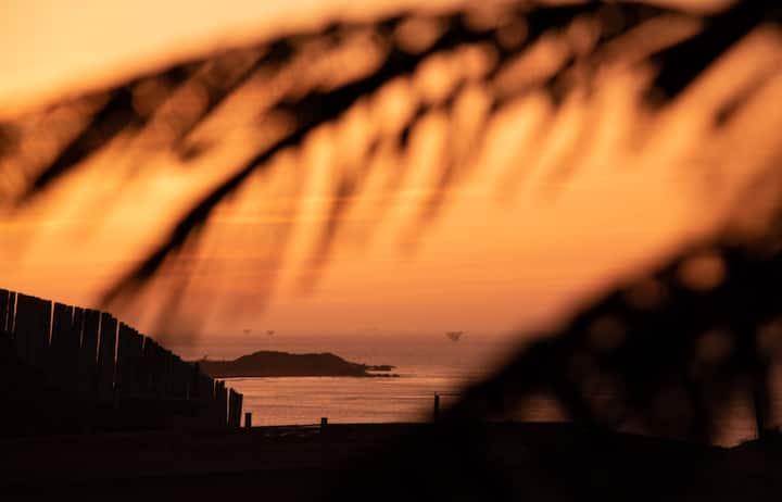 Mahalo lobitos surf house