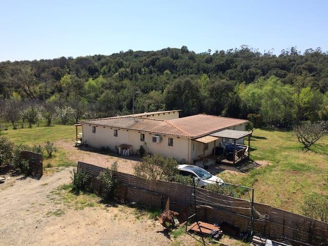 Villa avec grand jardin - Linguizzetta - Hus