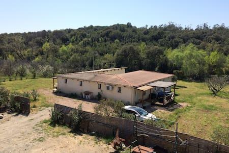 Villa avec grand jardin - Linguizzetta - Haus
