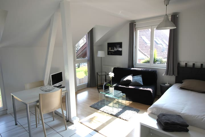 sunny 1-room apartment Strasbourg