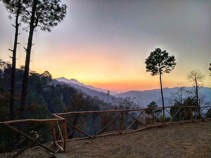 Jungle Stays | Swiss Camps | Spectacular Views