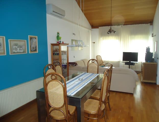 cozy loft - (PHONE NUMBER HIDDEN) - Ljubljana - Loteng