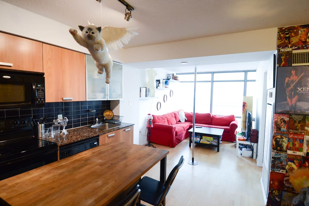 Kitchen and living area- complete with flying cat and stripper pole!